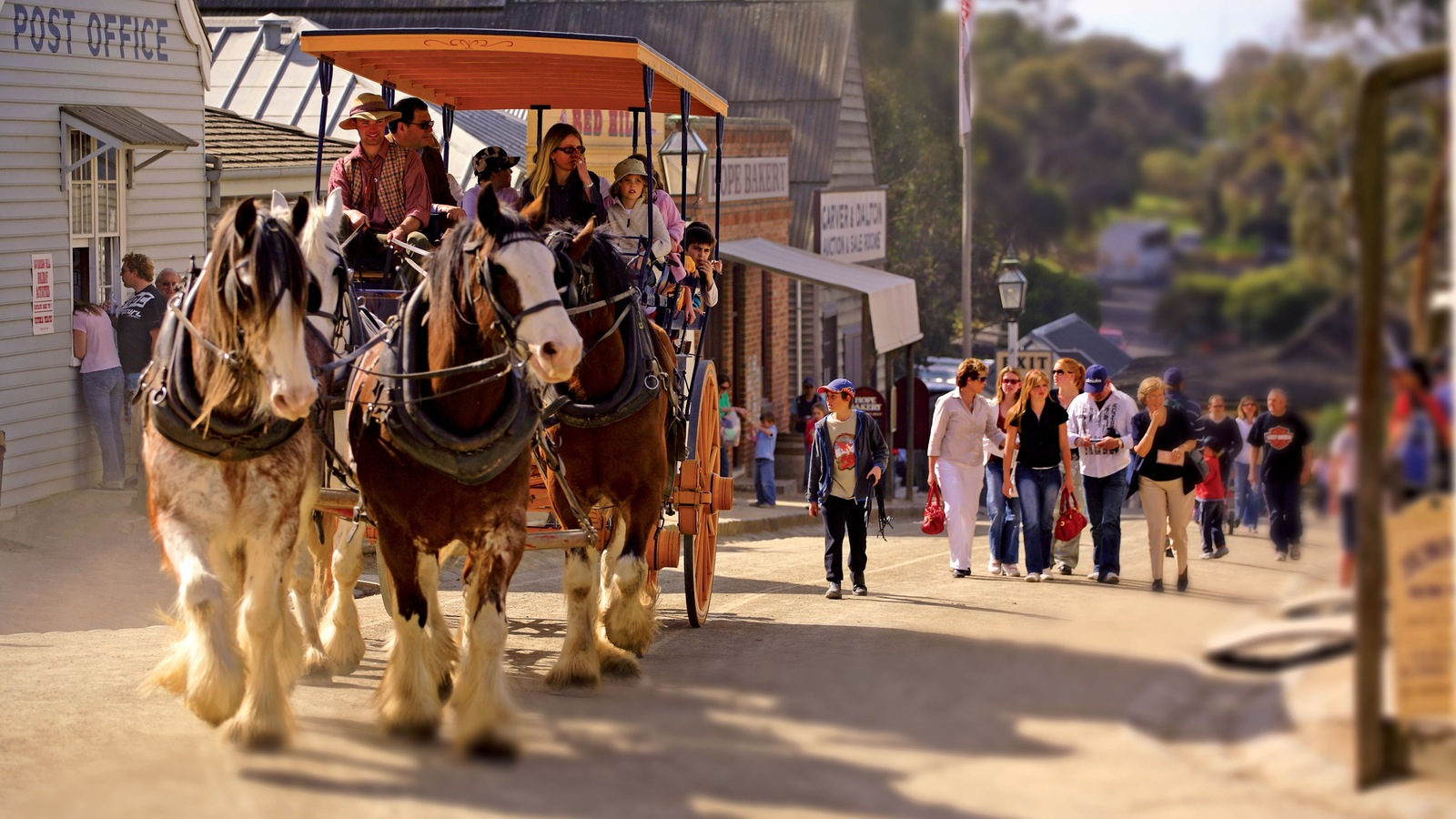 Horse & Coach Ride at Sovereign Hill