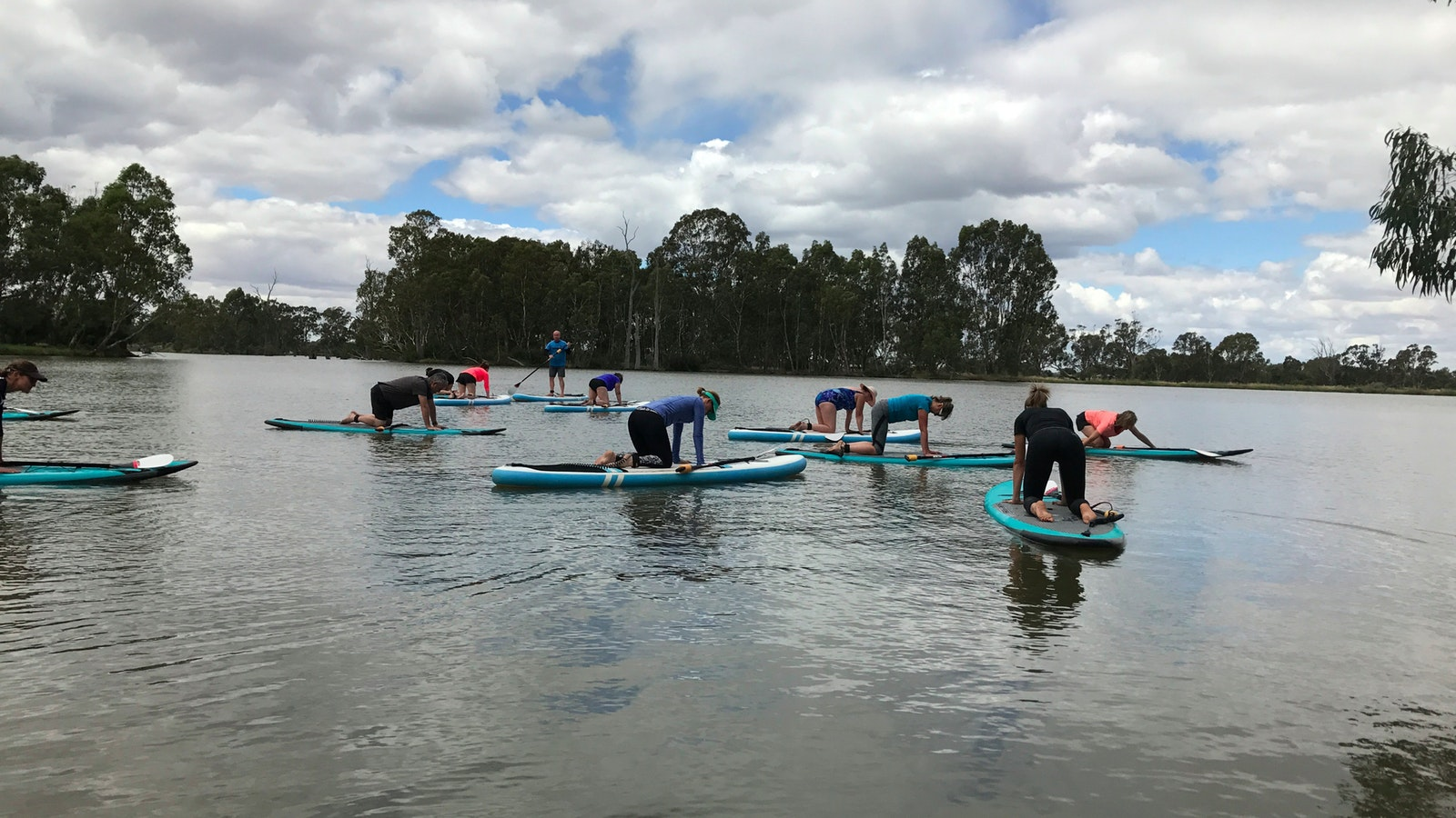 Large group of paddleboarders on the water doing cat and cow yoga move.