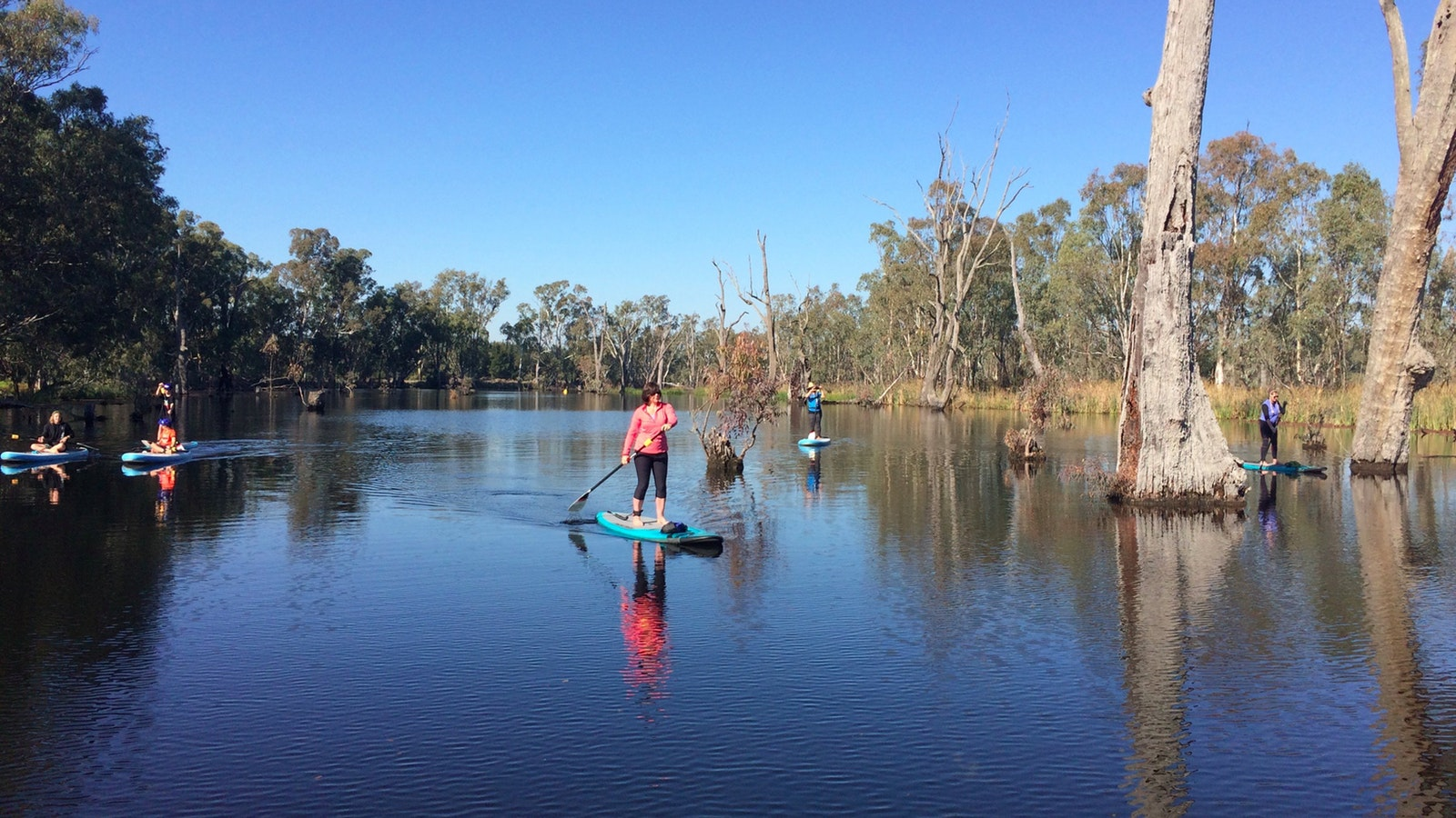People paddling on wetlands, water is calm and the sky is blue