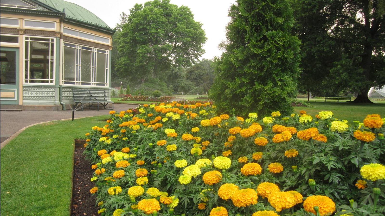 Botanical Gardens, BALLARAT - Goldfields