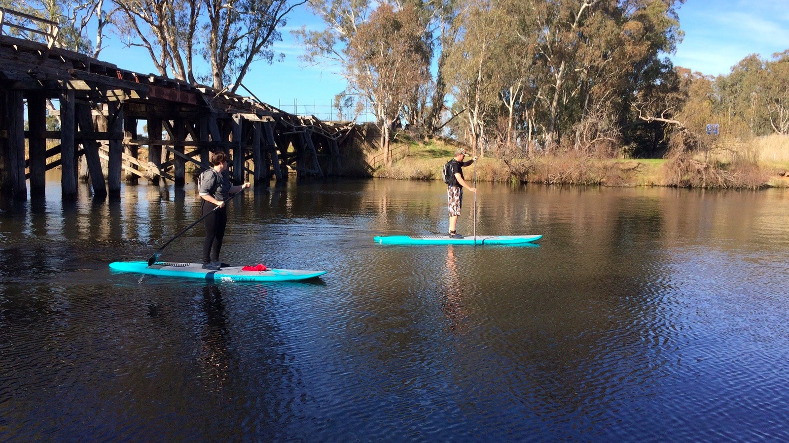A couple paddling on a tour on the Goulburn River in Nagambie, under an old timber bridge.