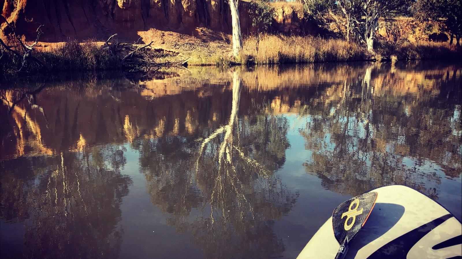 Reflections in the Australian bush