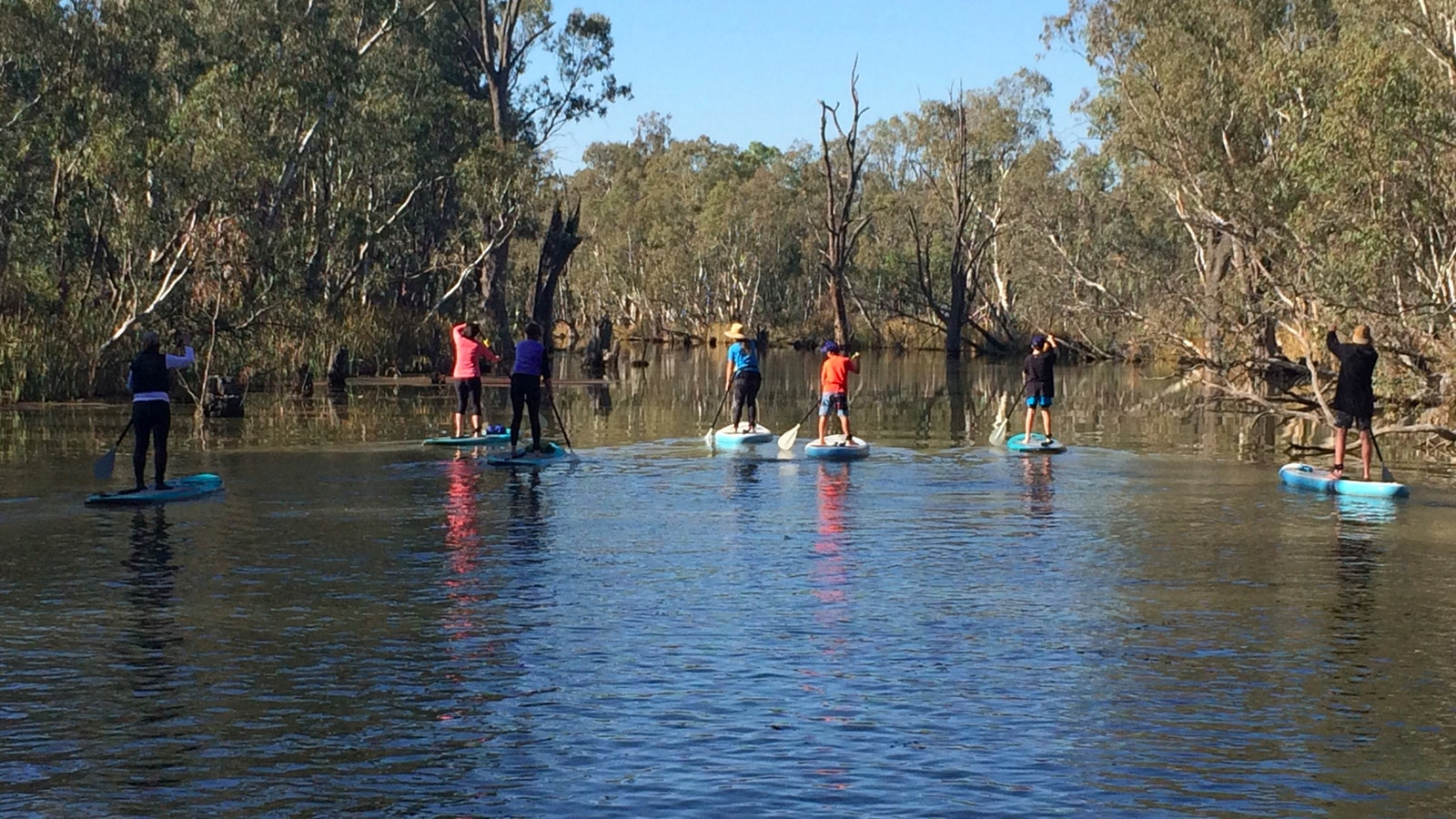 A family group spread out accross the creek in wetlands on the Gunbower Creek in Koondrook.