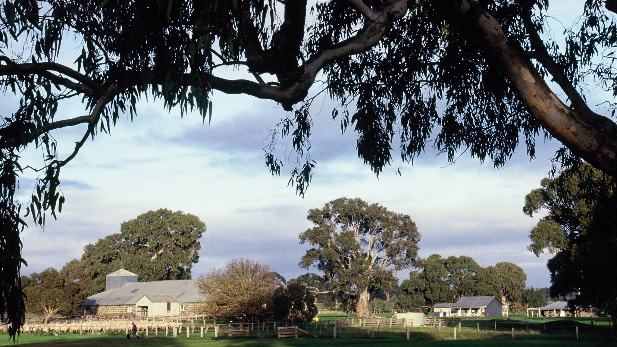 Stoneycroft cottage and the shearers quarters