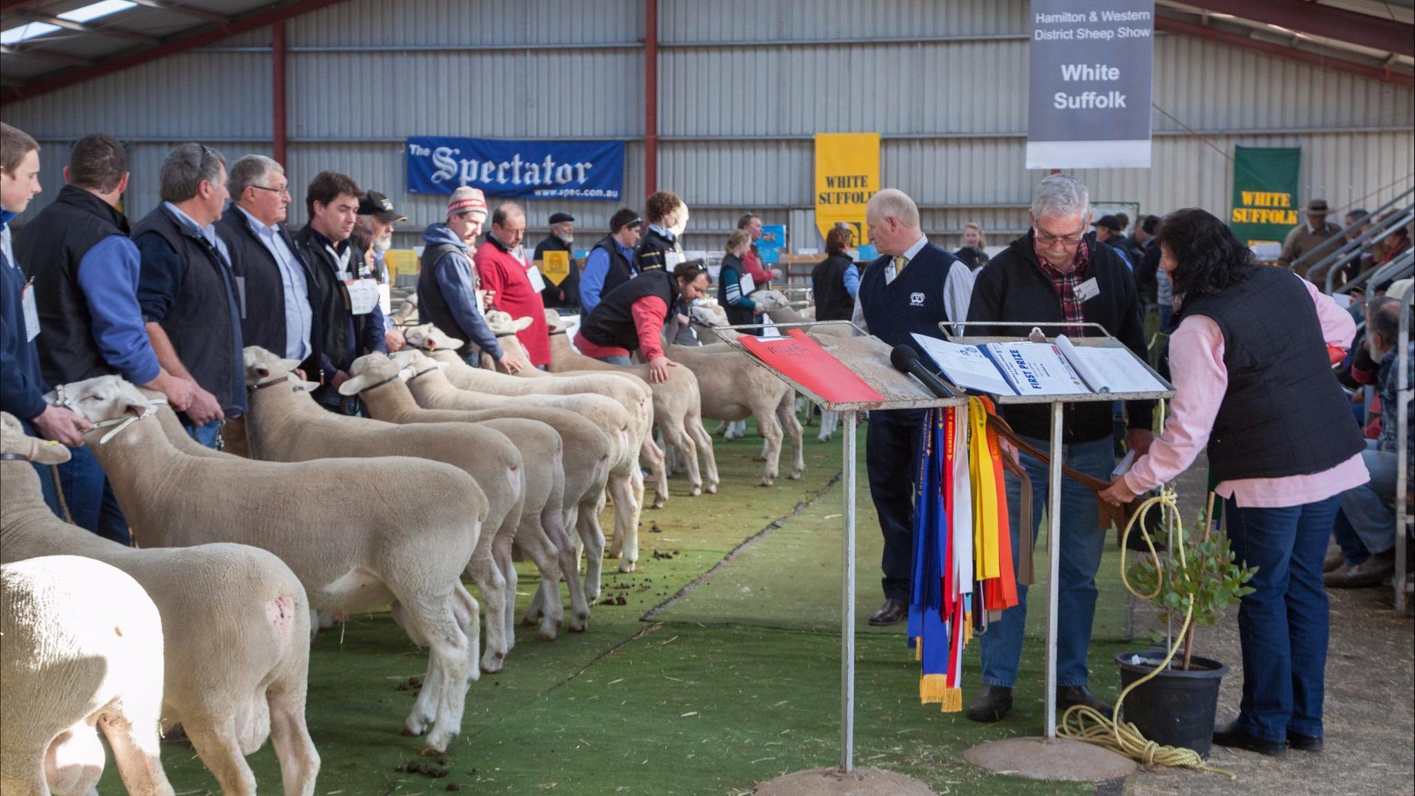Sheepvention