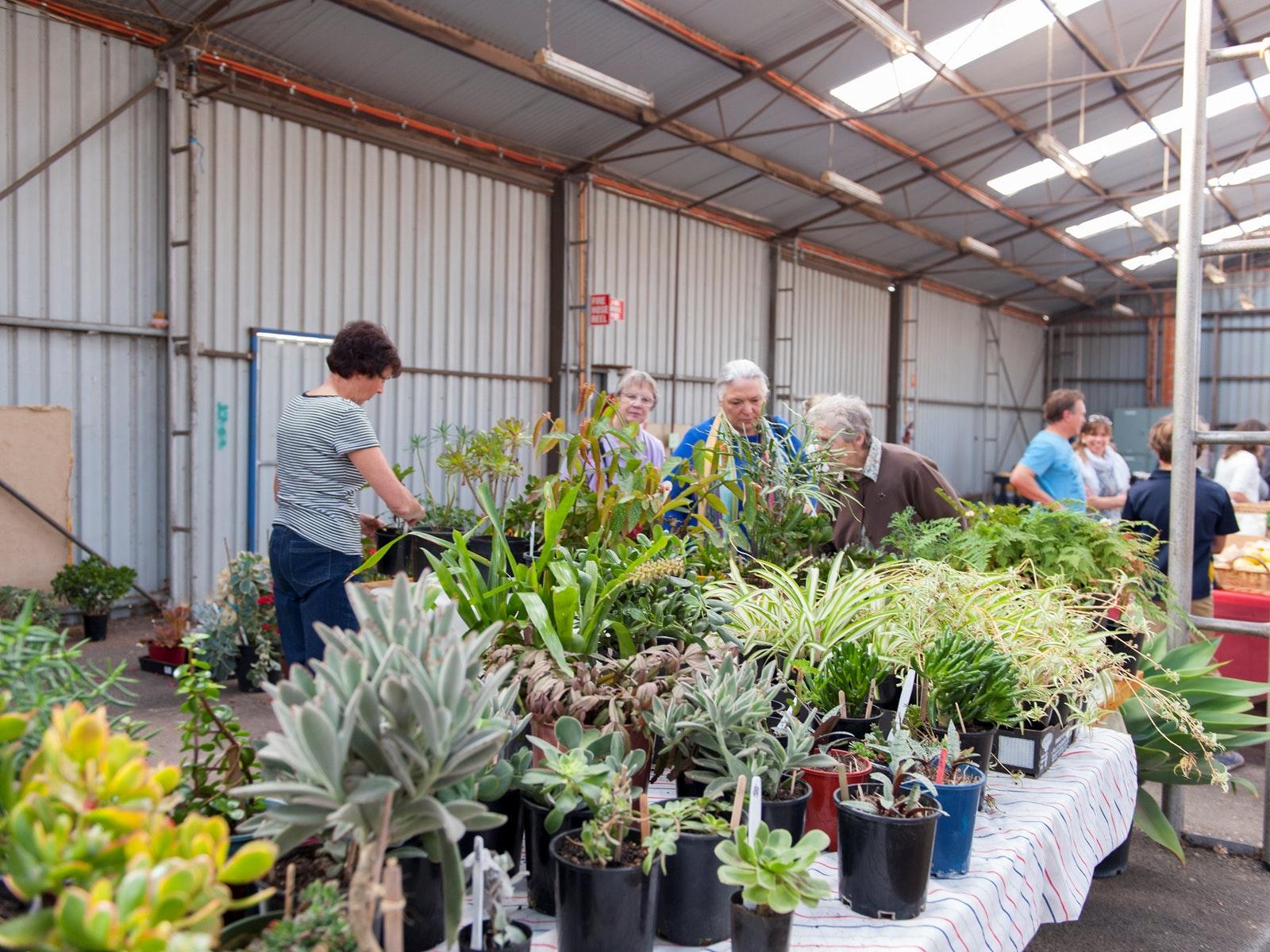 Plants Showgrounds