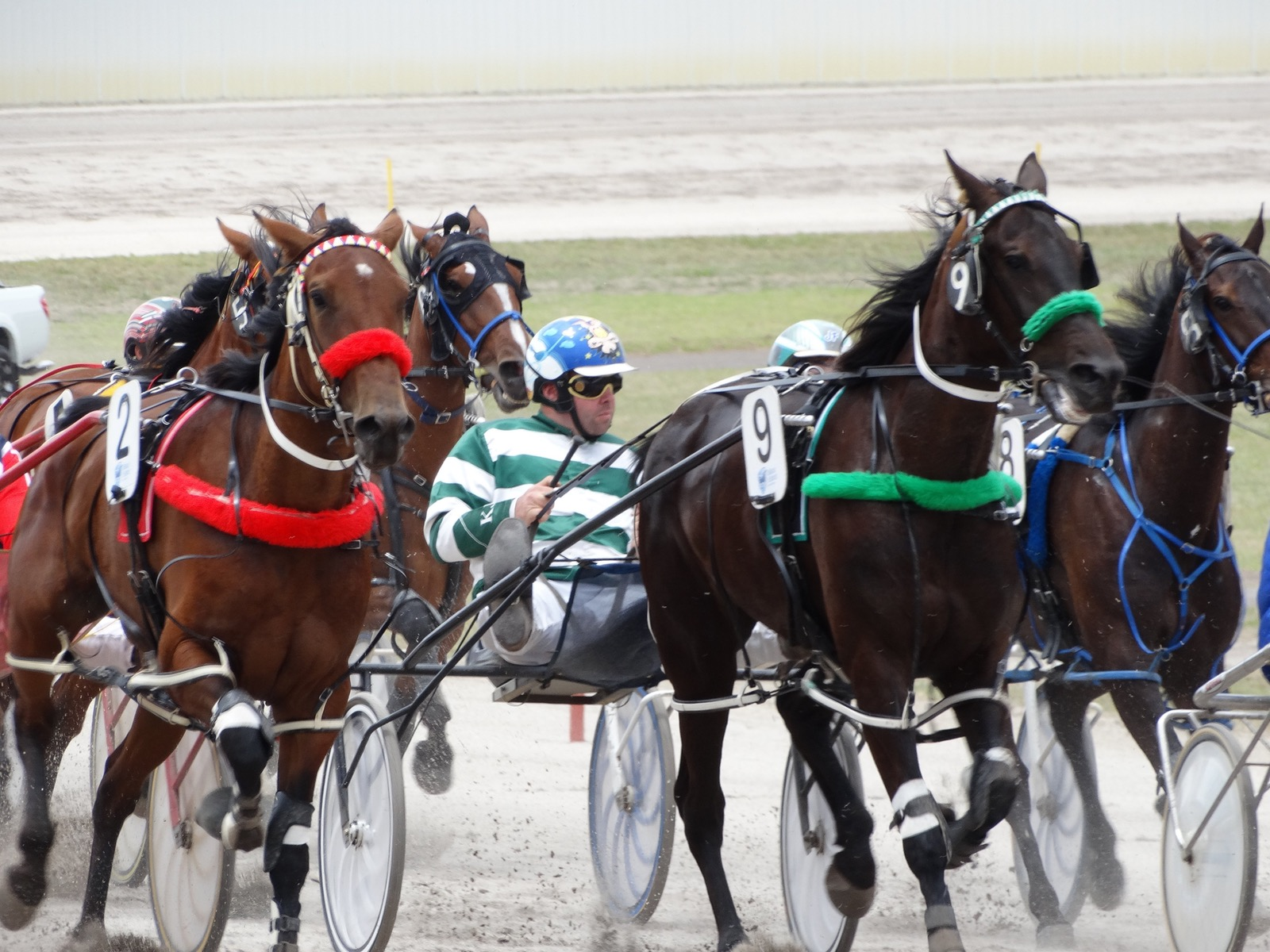 Hamilton Harness Racing, June