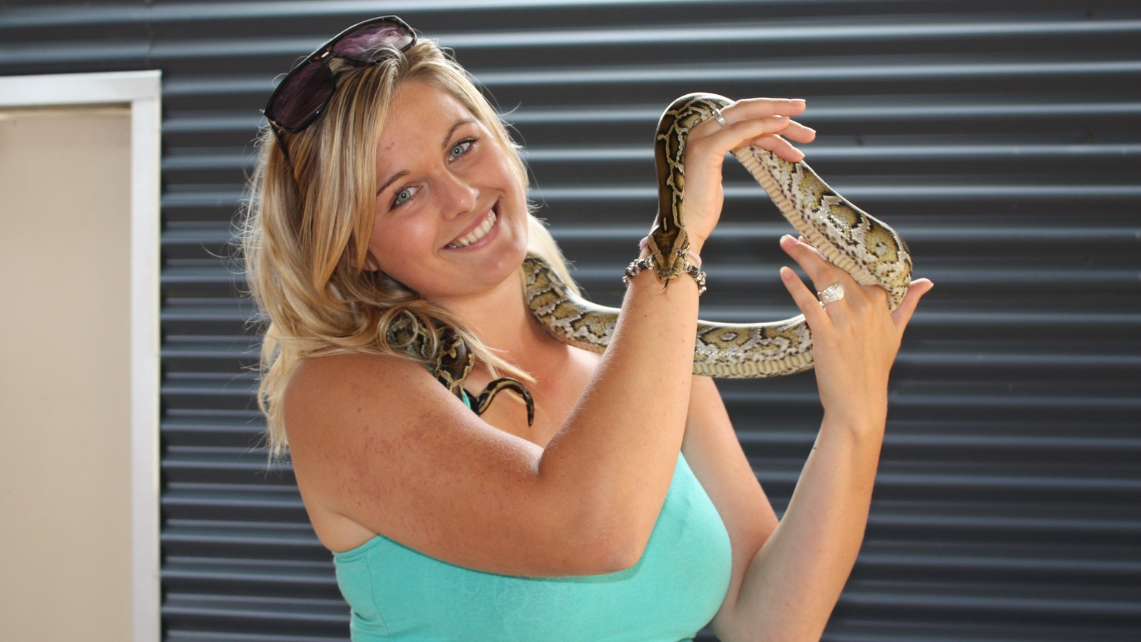 Close encounter with a Burmese Python
