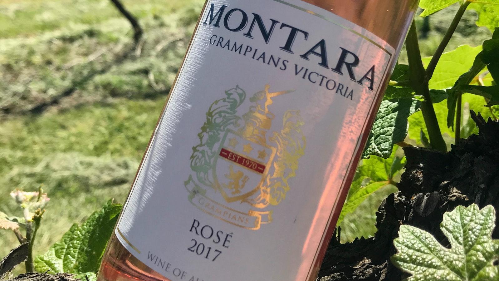 Wine in the vineyard