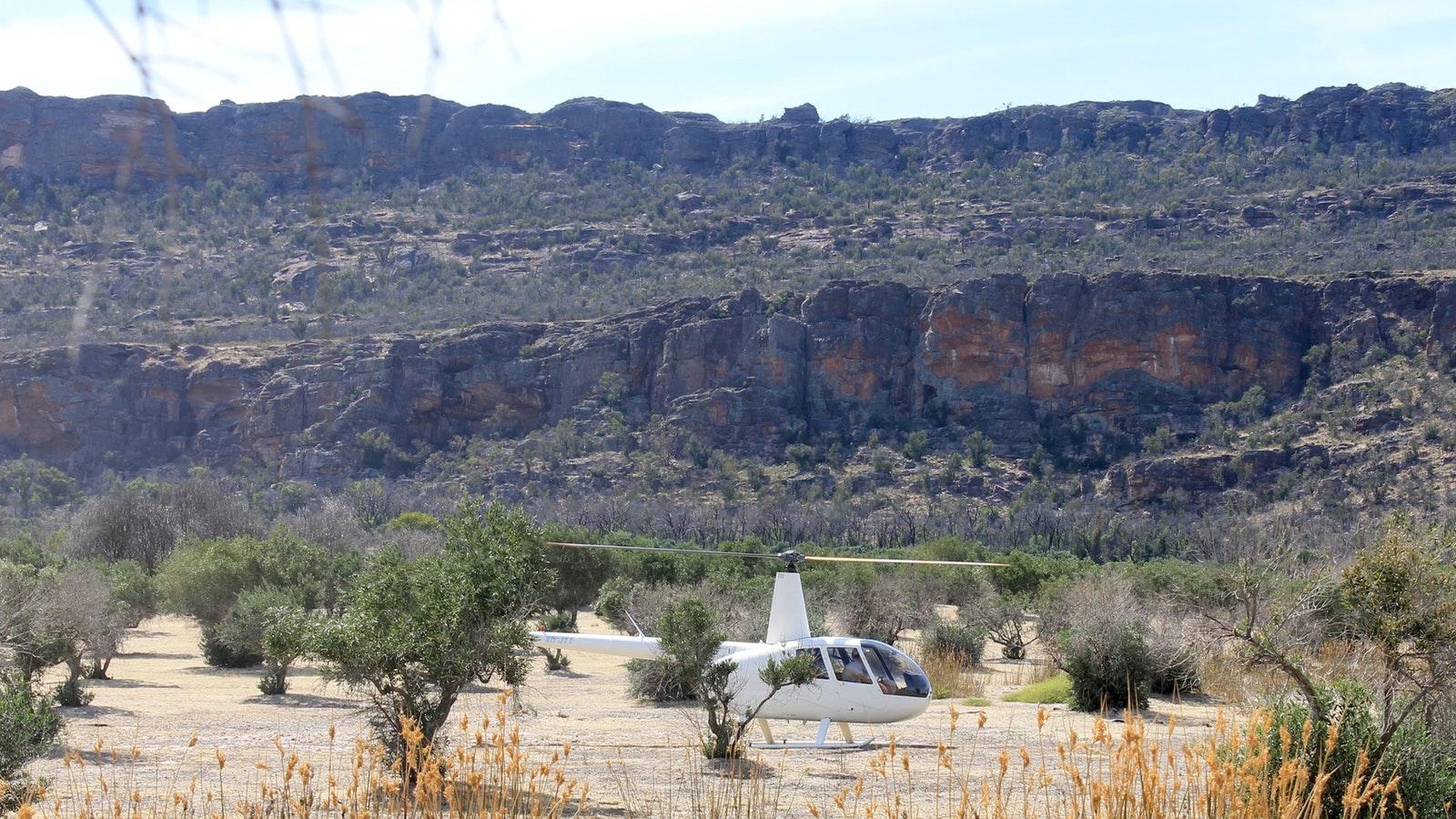 Landing between the olive trees