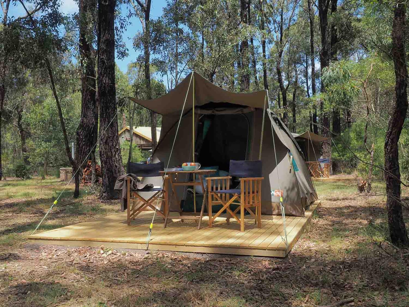 Tall Trees Camping