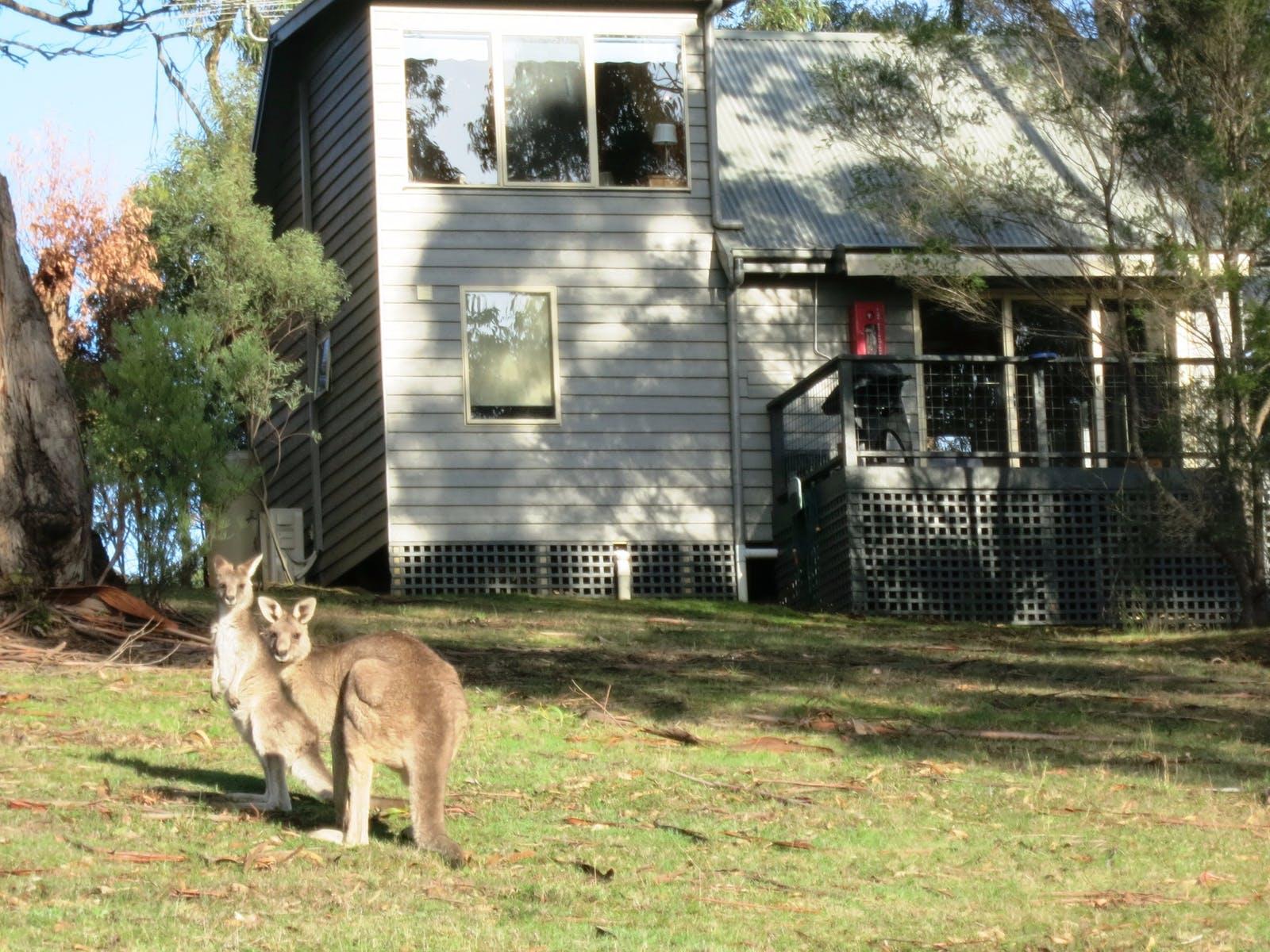 Lorne Bush House Cottages and Eco Retreats