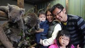 Tan family from Singapore enjoying an up-close Koala Experience.