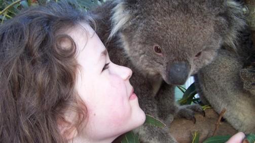 Koala Experience