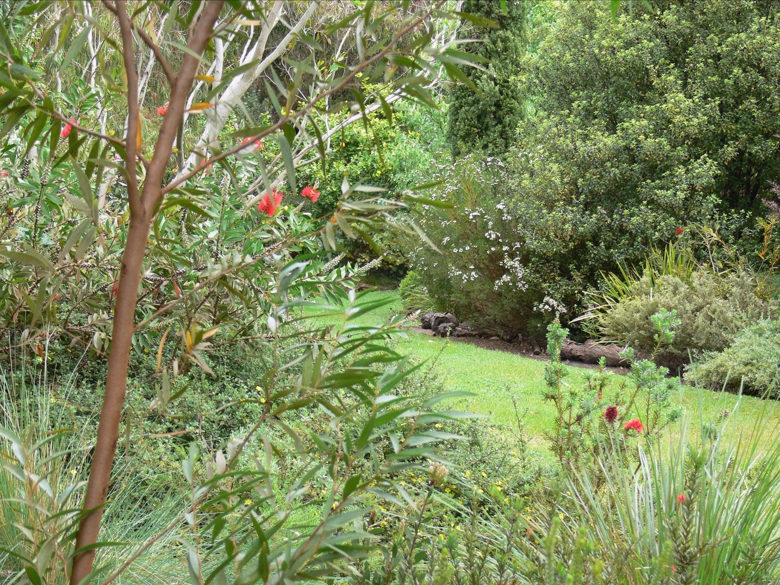 A section of the bottom garden