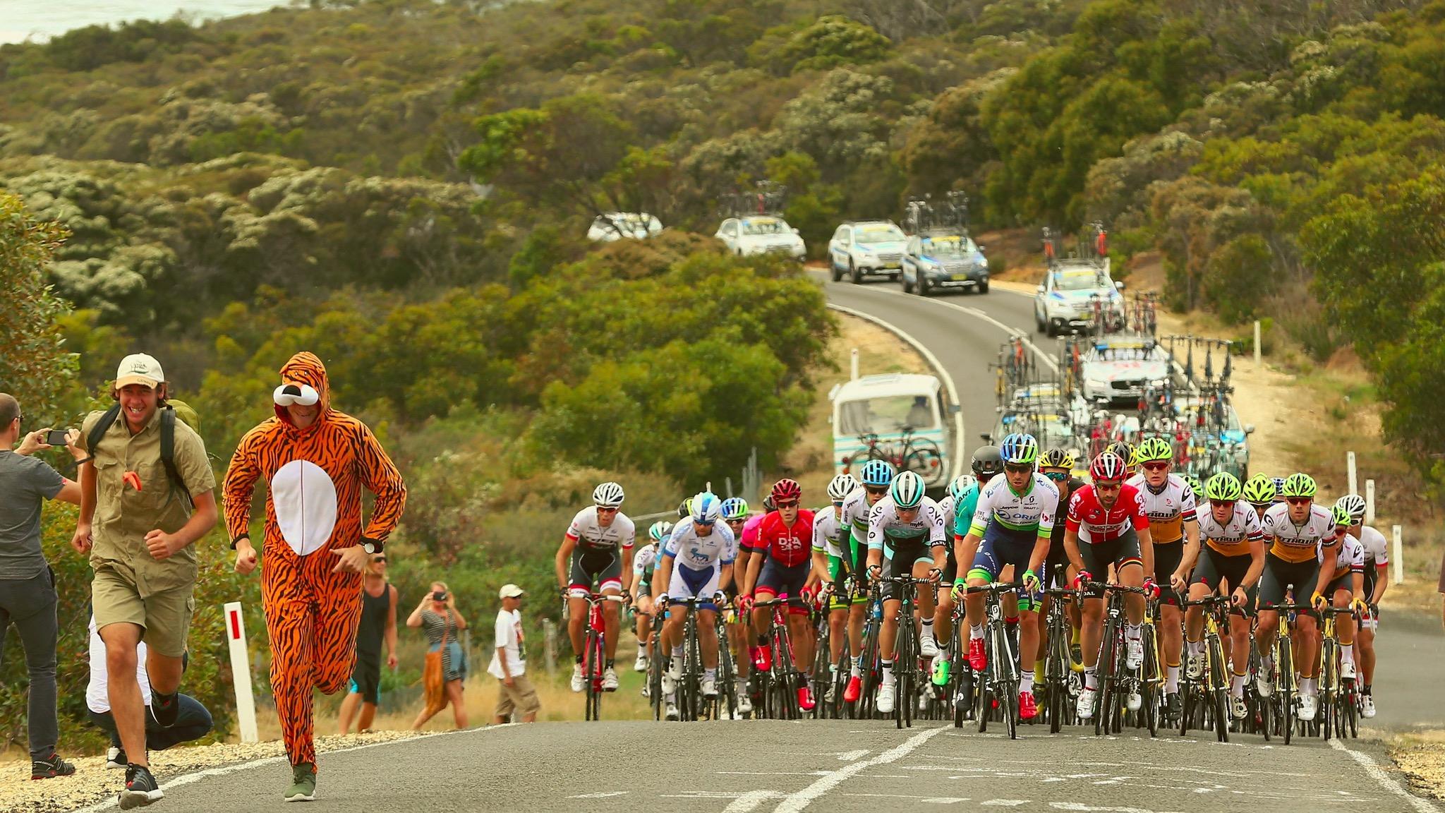 Cadel Evans Great Ocean Road Race. Photo Credit - Getty Images