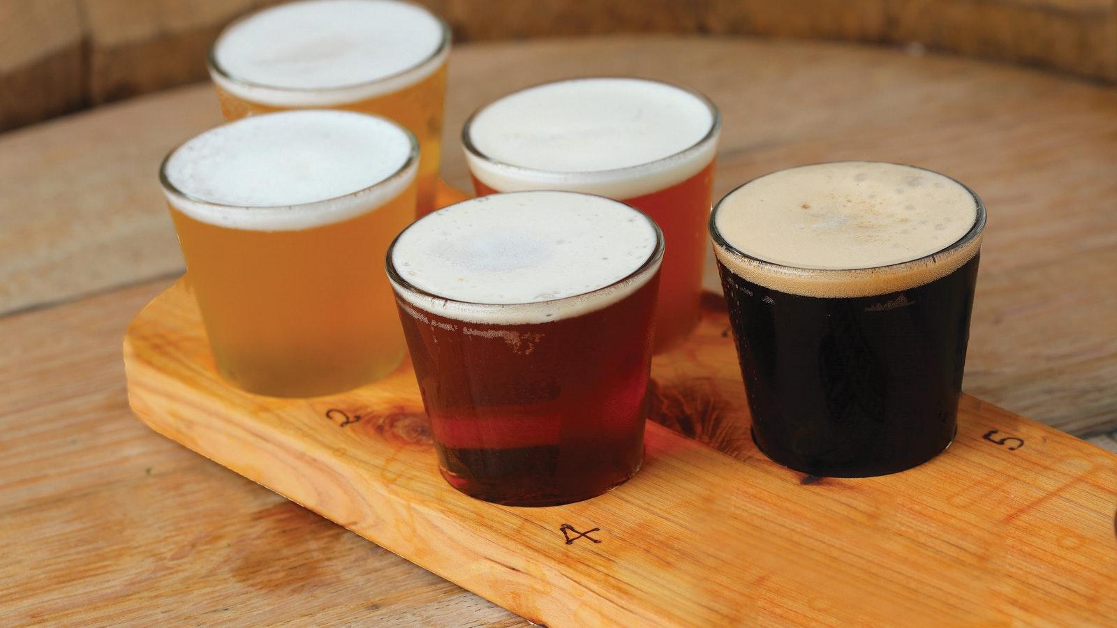 Beer Paddle