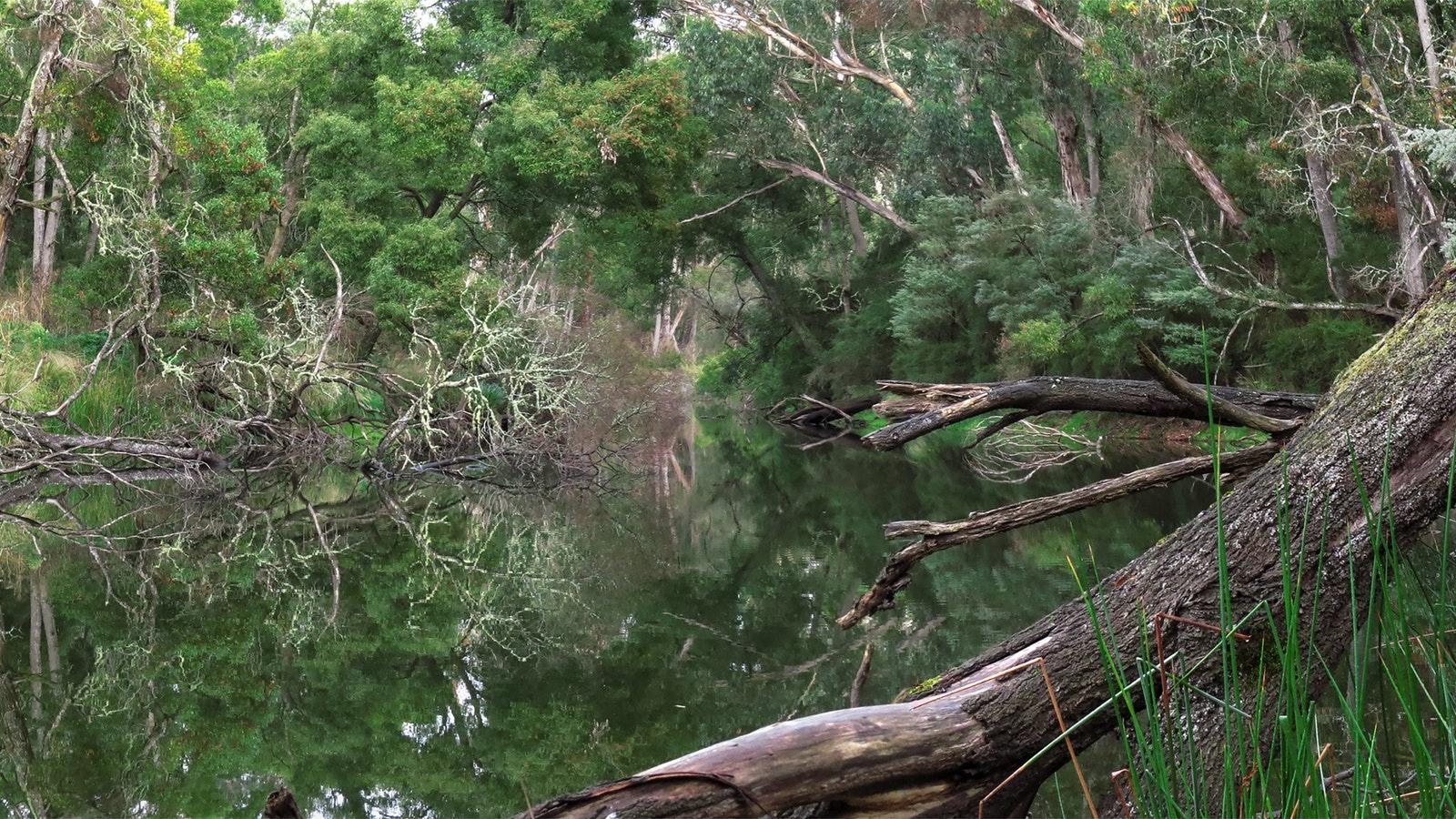 Crawford River Regional Park