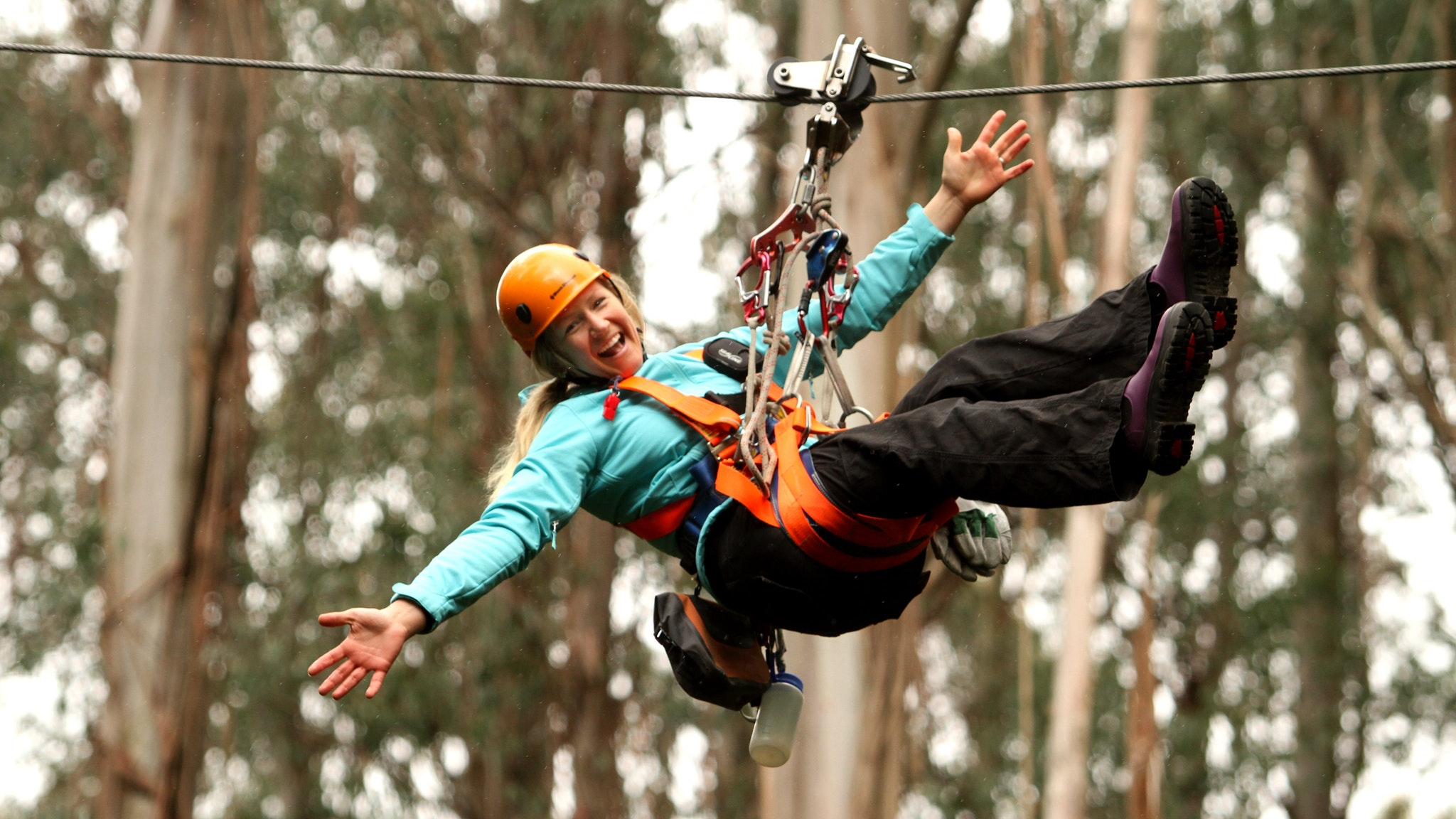 Zipping throught the forest