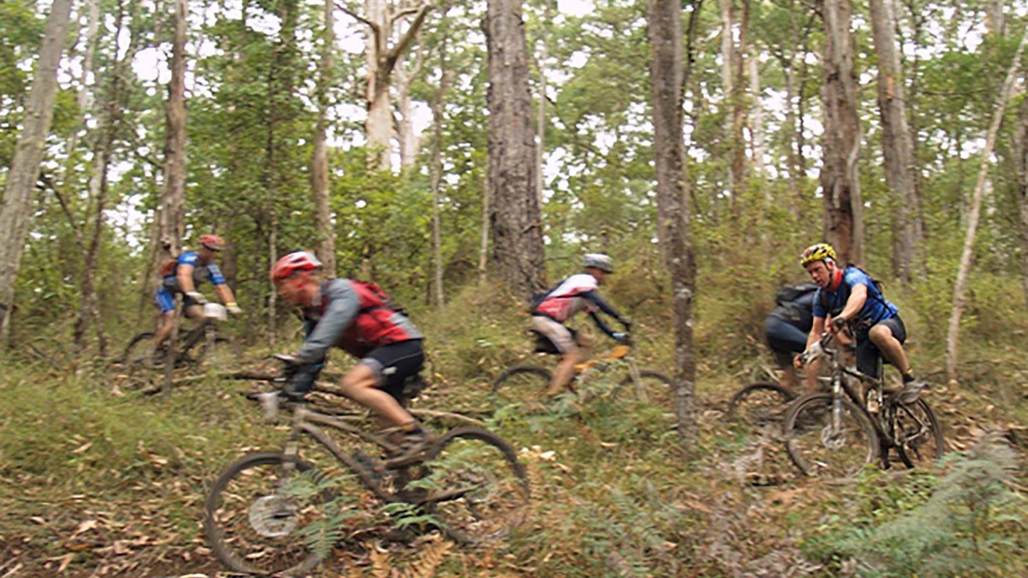 Forrest Mountain Bikes