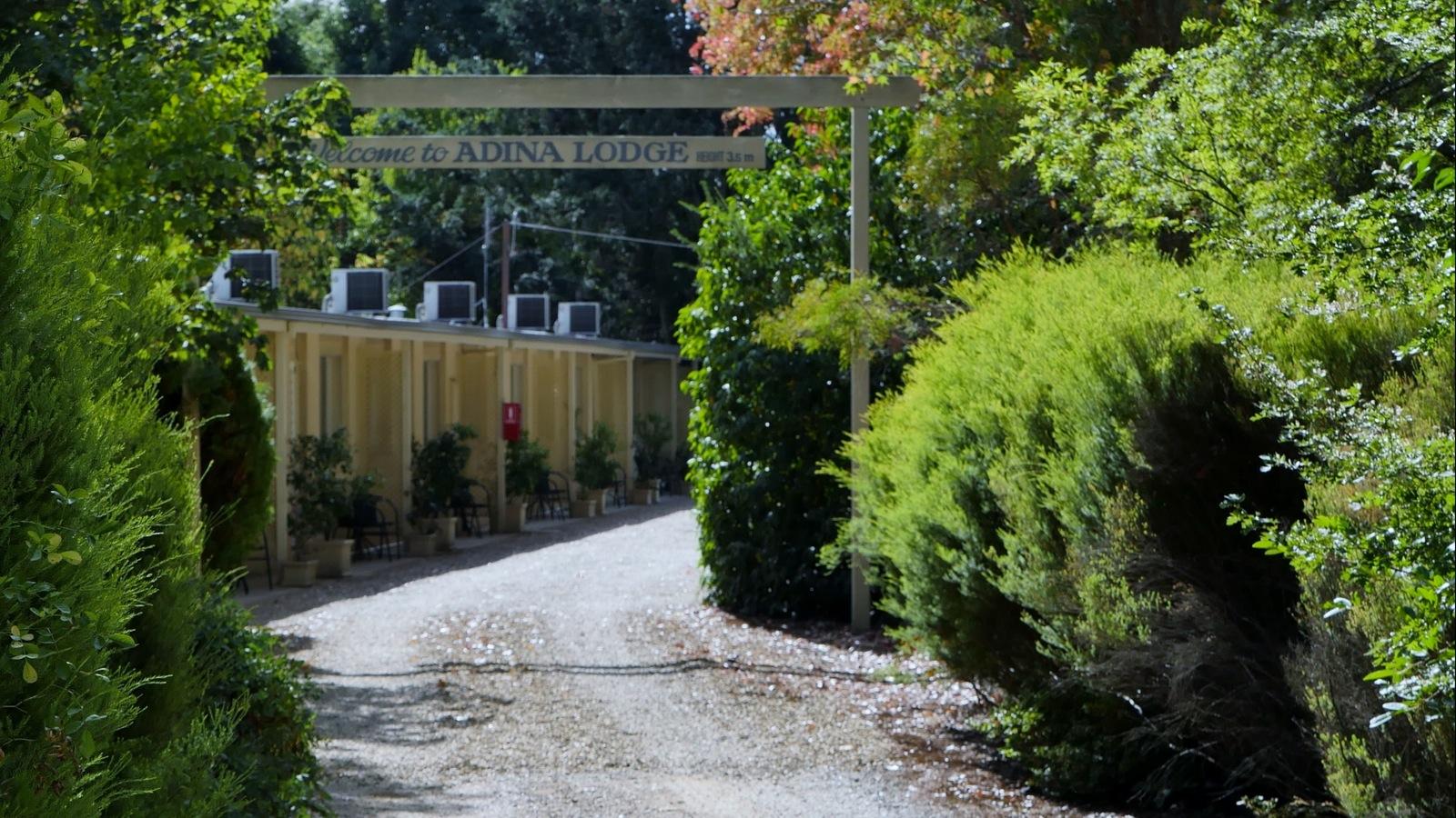 Large Oak trees covers Adina Lodge