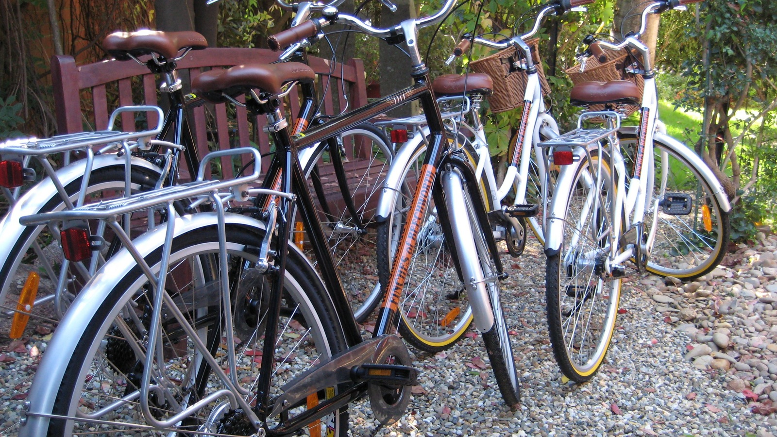 Complimentary Bicycles to use