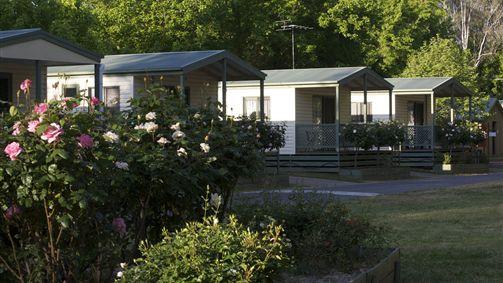 Deluxe One bedroom Cabins