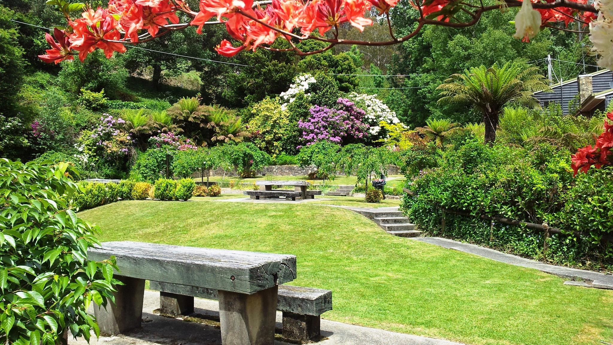 Bogong Village Gardens