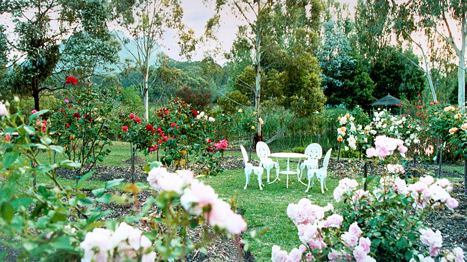 Acres of lovingly landscaped gardens