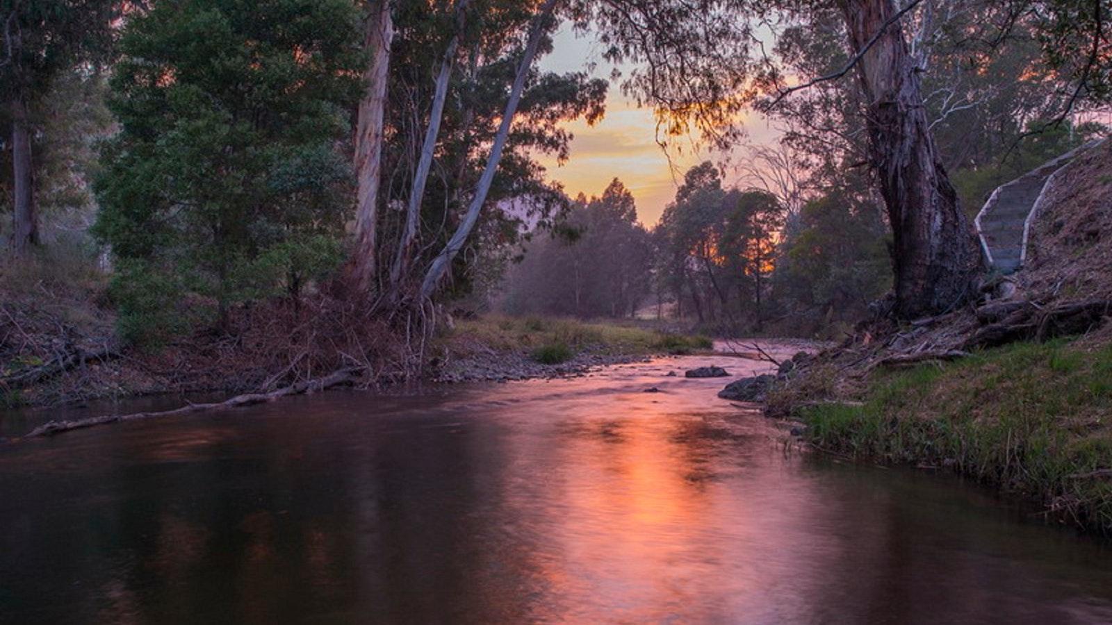 Howqua River sunrise