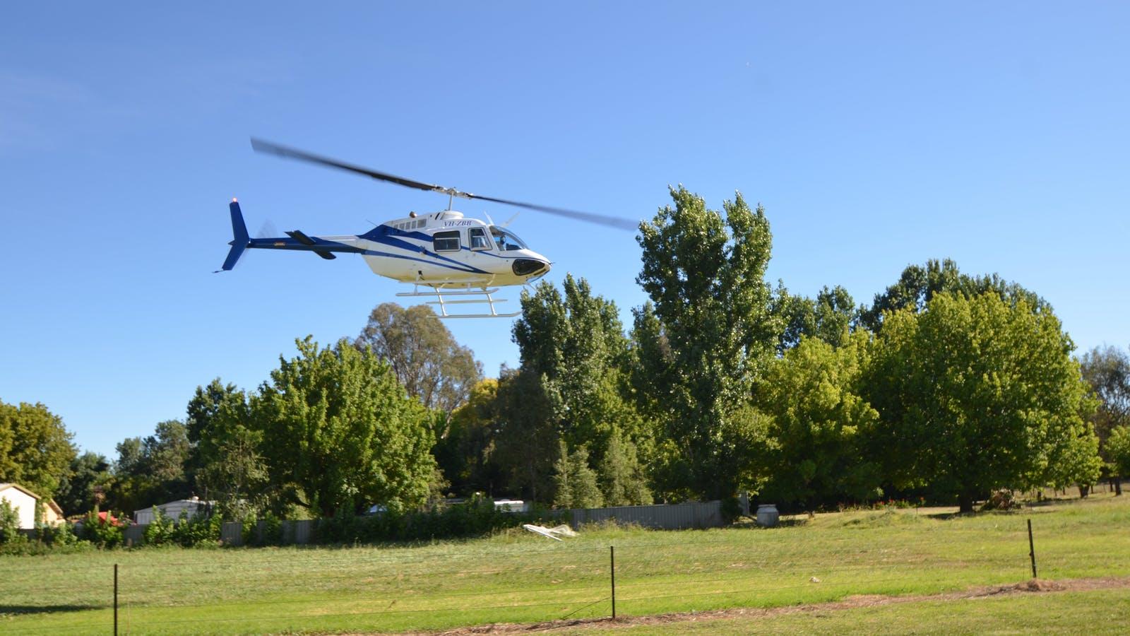 Helicopter next door
