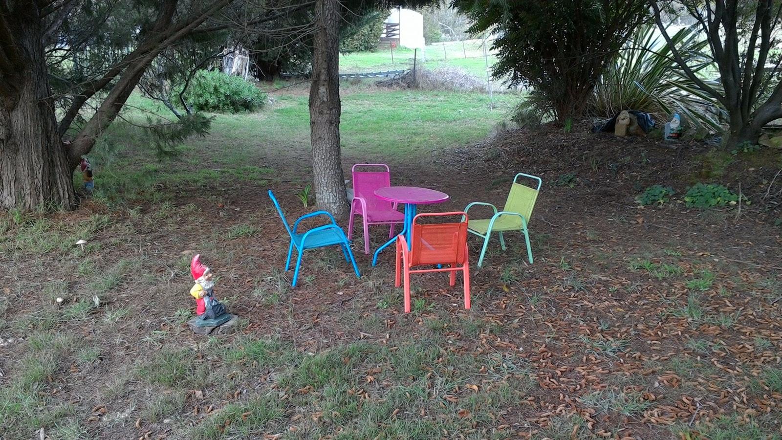 Fairy and gnome garden