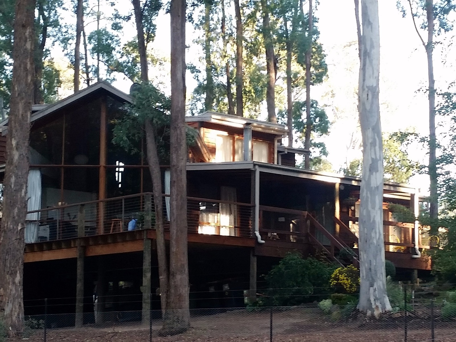 Large decks and huge windows give incredible forest views
