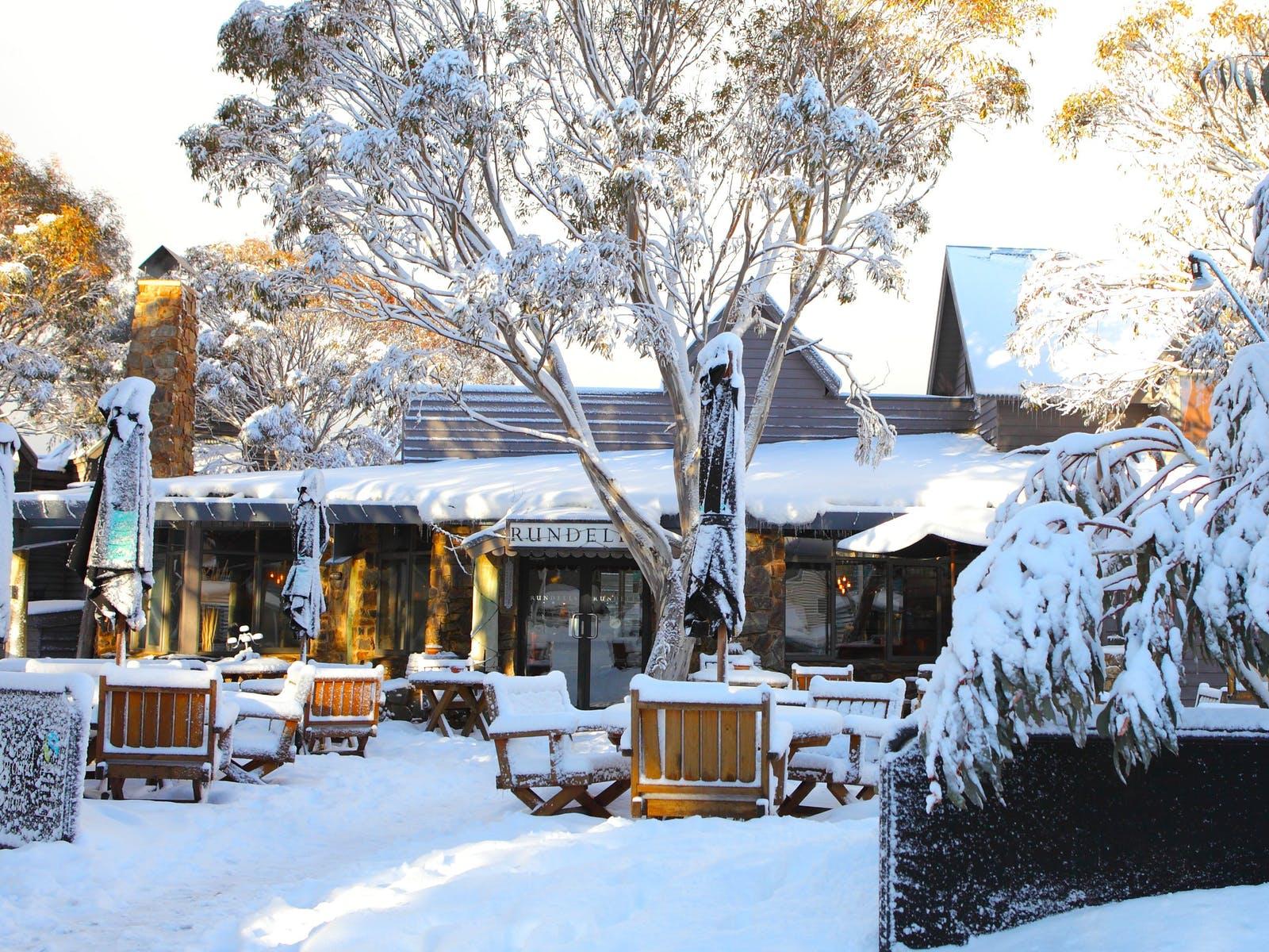 Rundells paddock in winter