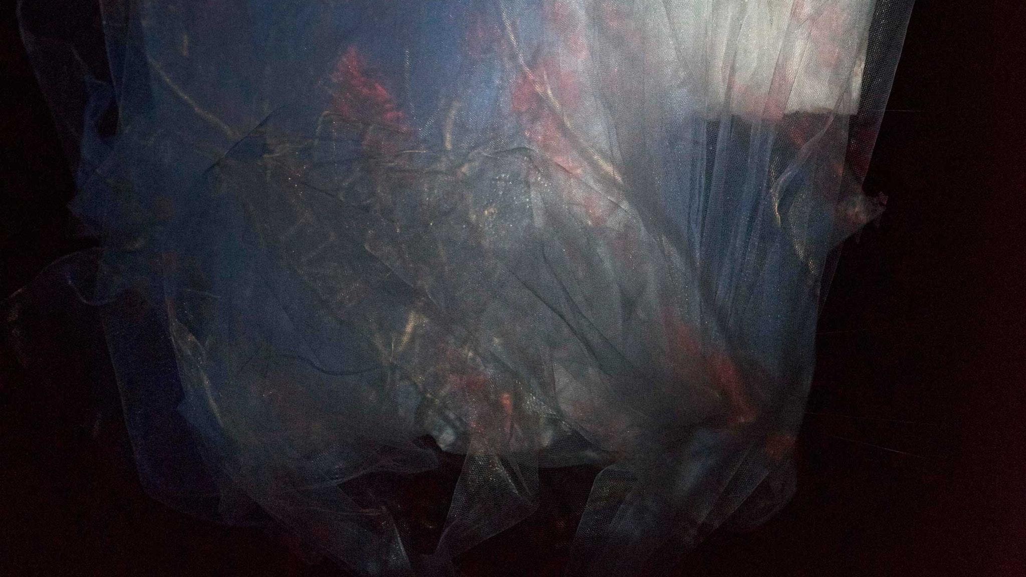 Darron Davies, The Thin Veil of Memory #7 (detail),