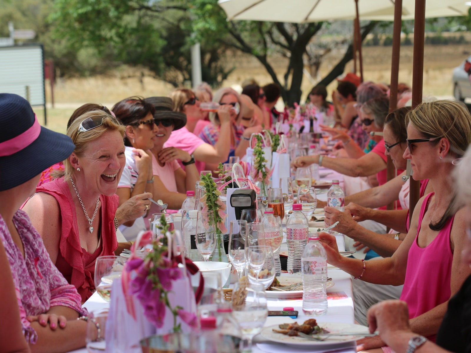 Ladies lunching in pink