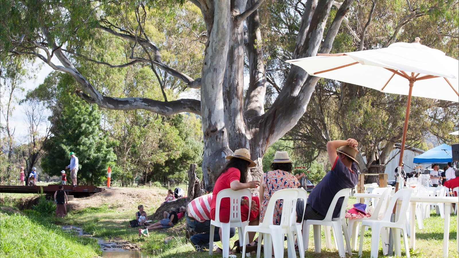 Drinking wine by the King River under 140 year old gum trees