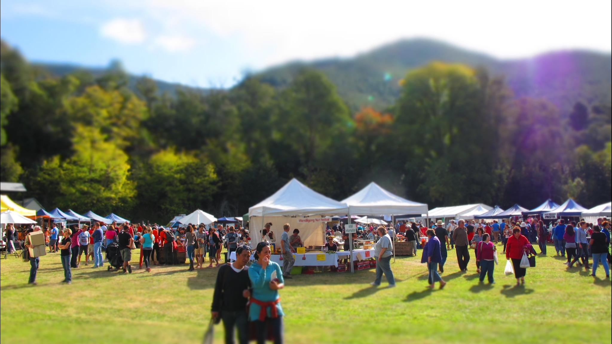 Wandi Nut Festival