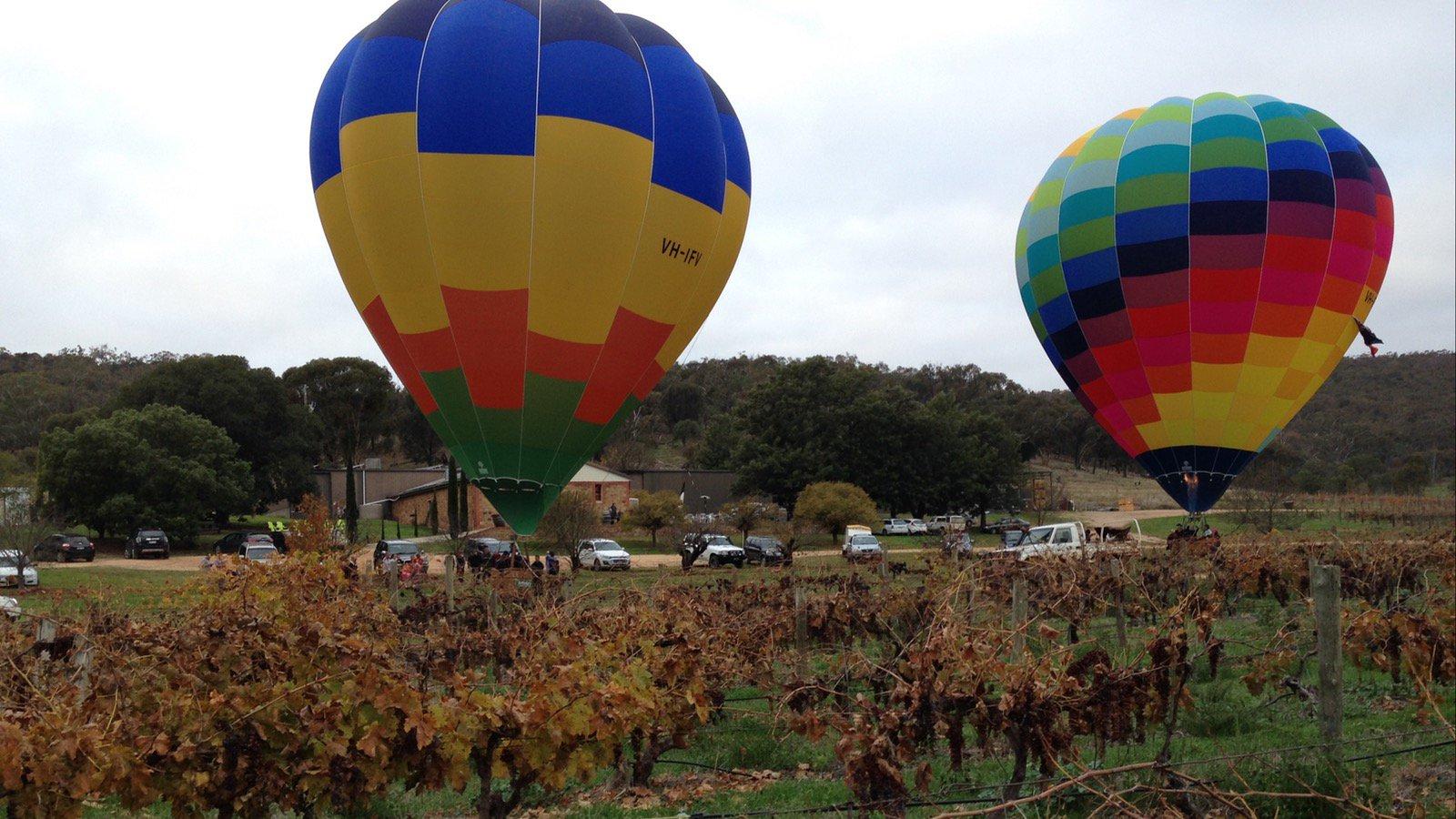 Hot air balloons at Taminick Cellars