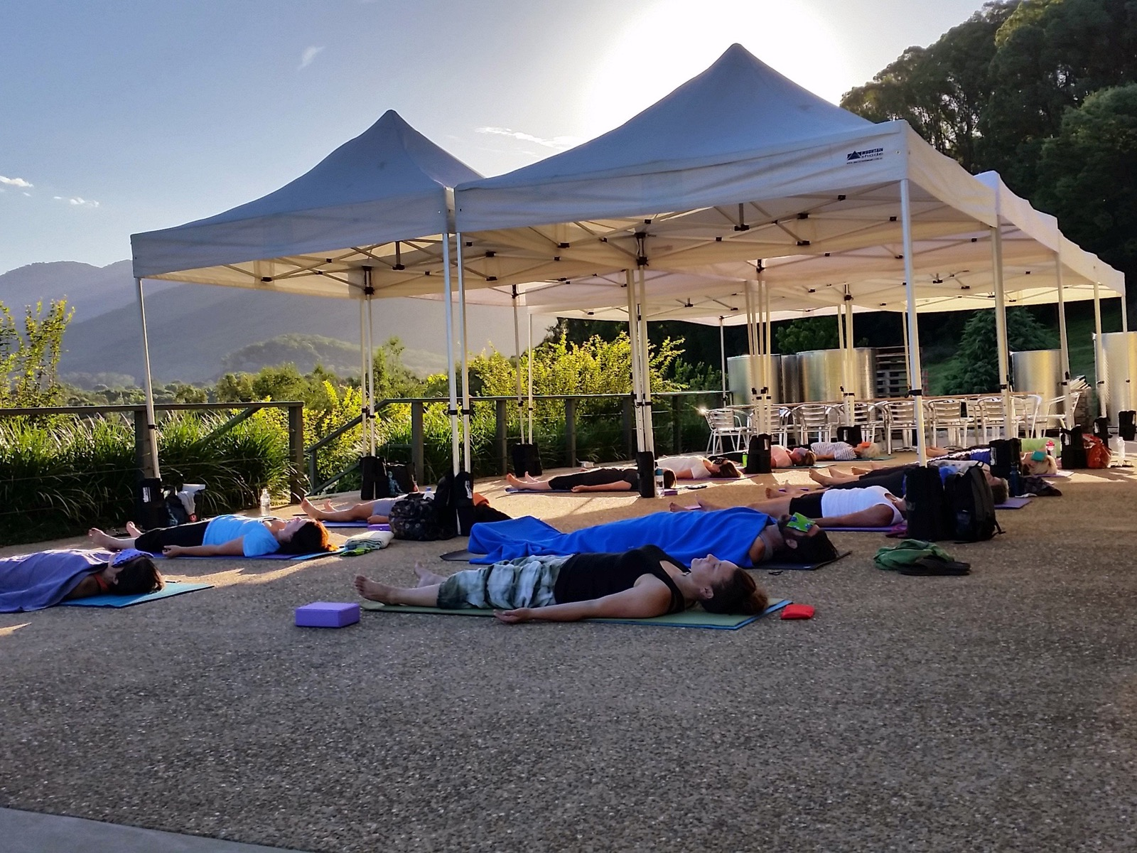 Vinyasa Yoga in the Vines at Ringer Reef