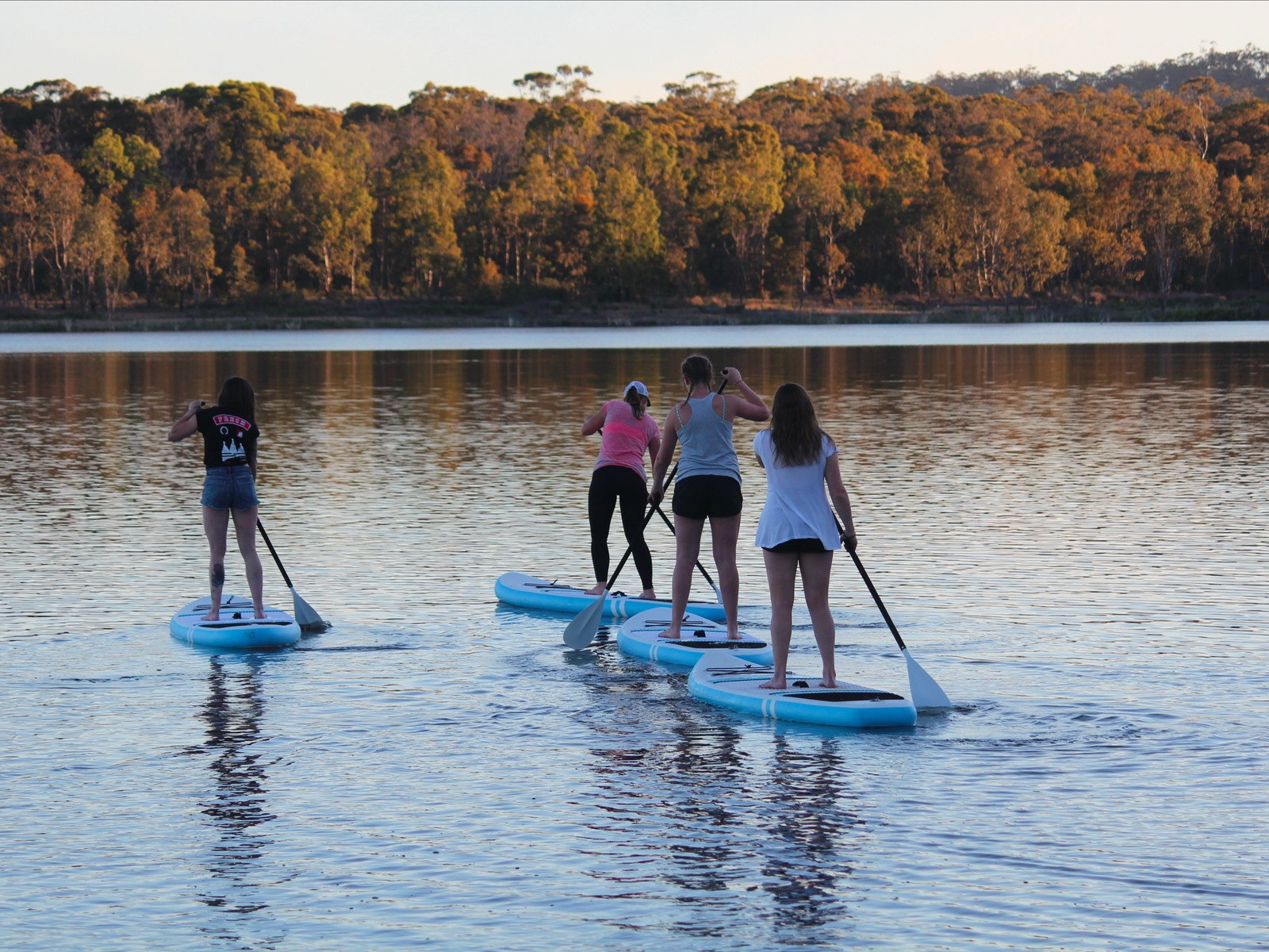 Four Paddlers on water in the Sunset