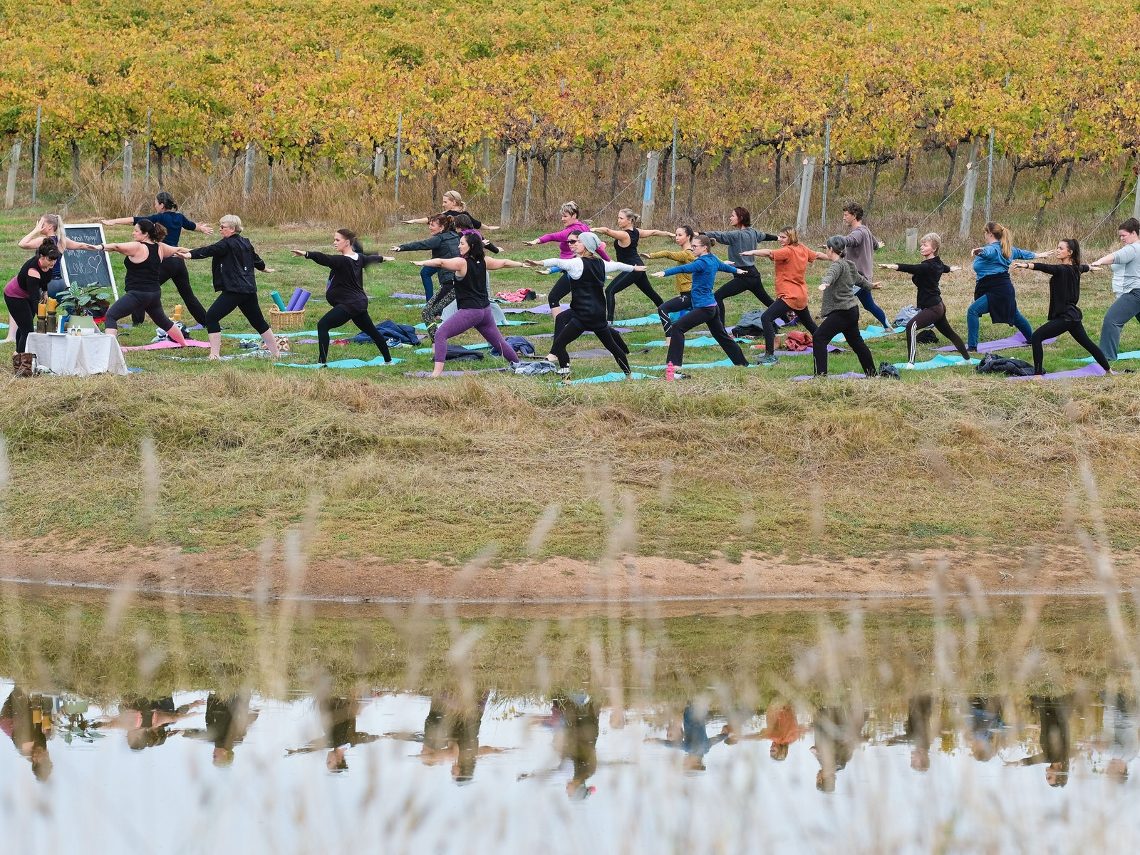 Spring in to Yoga at John Gehrig Wines