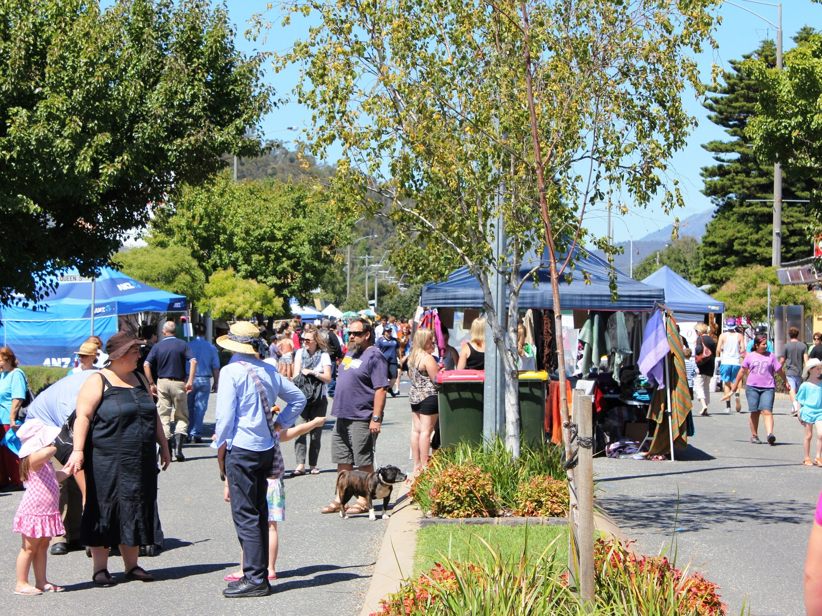 Myrtleford Bush Market
