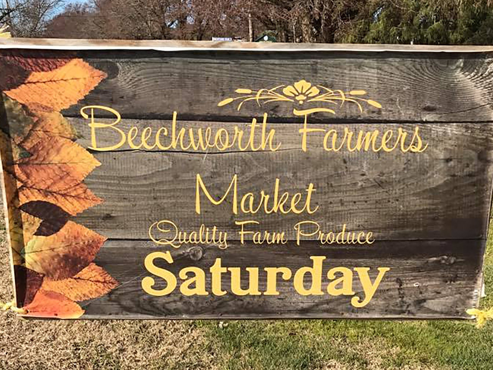 Beechworth Farmer's Market