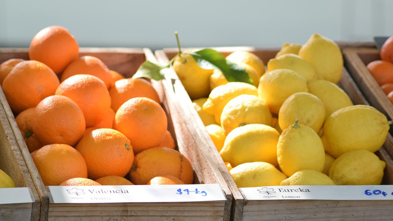 Murrnong fruits
