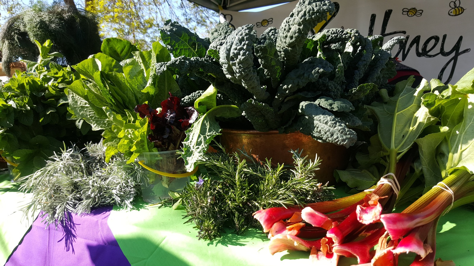 Fresh Vegetables at the Mansfield Farmers Market