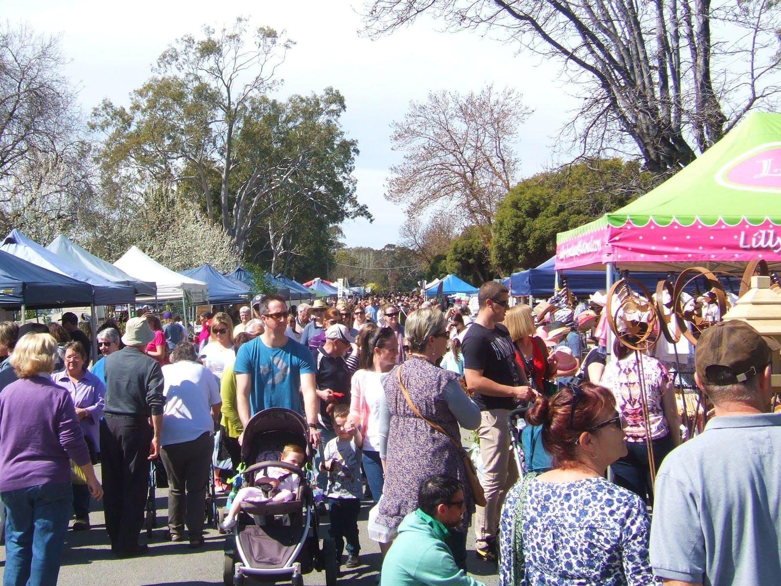 Violet Town Market