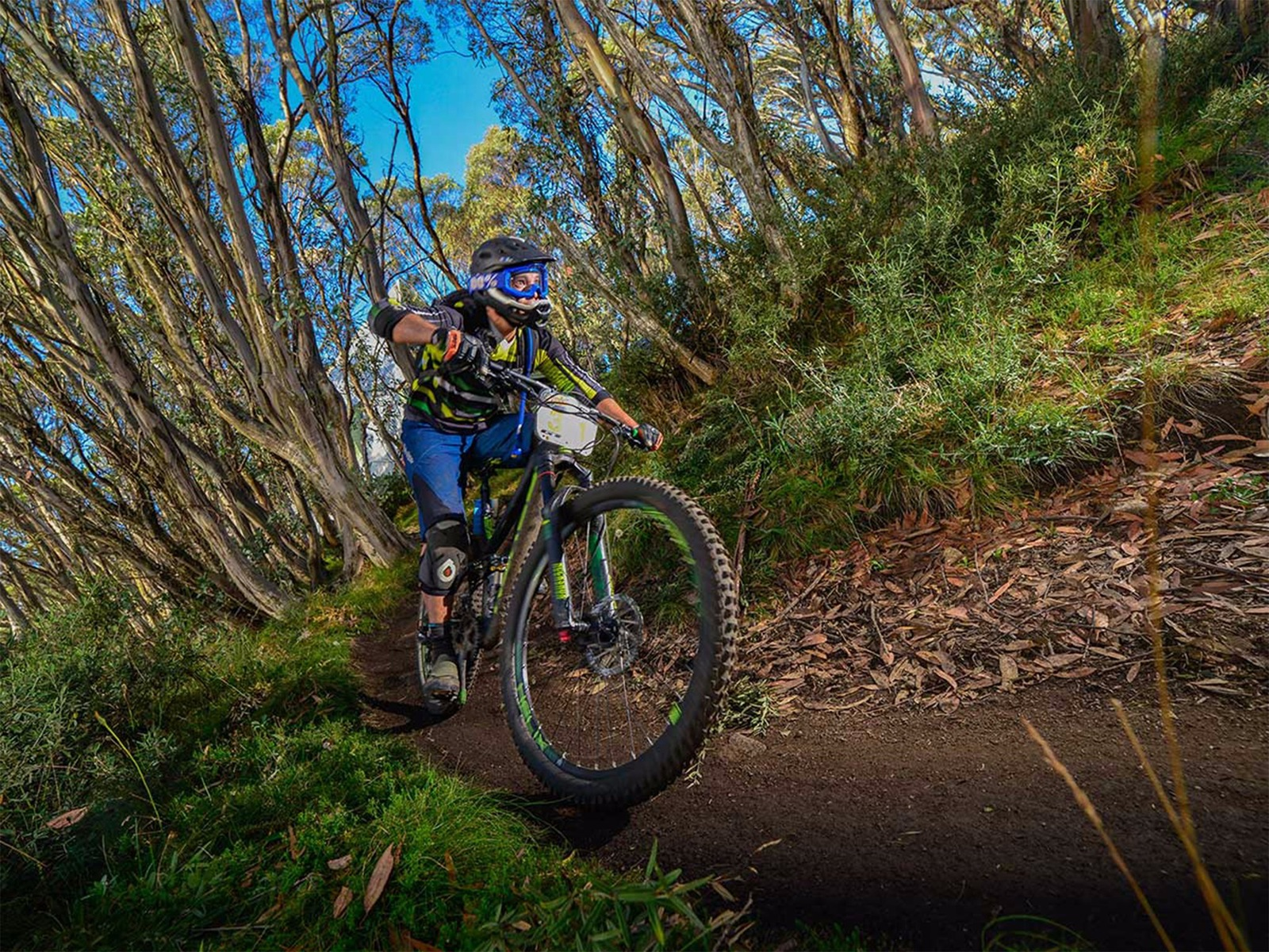 GT Bike Buller presented by Alpinestars