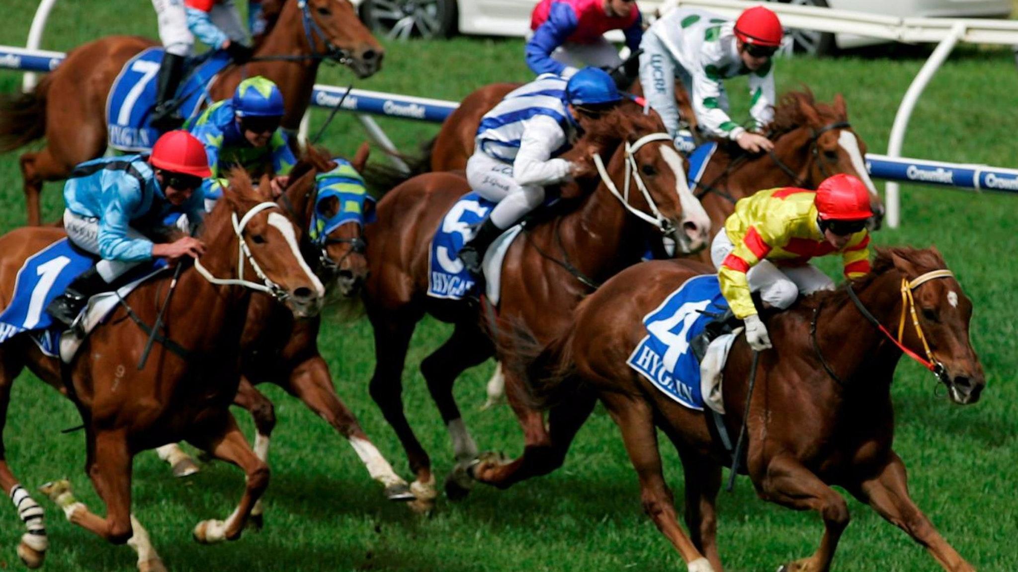 wangaratta races
