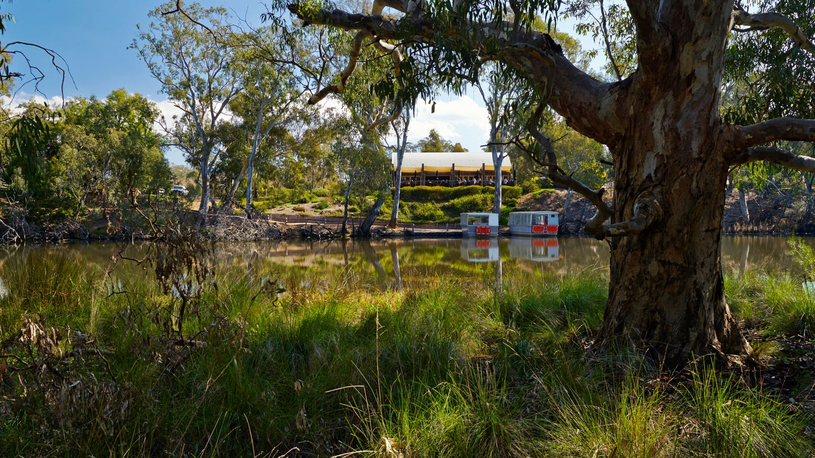 Tahbilk Cafe from the wetlands